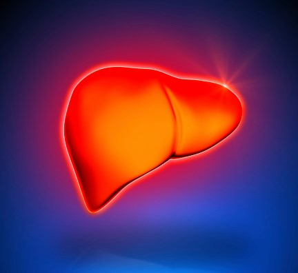 Screening for HCC: Should It Be Routine in Chronic Liver Disease Patients?