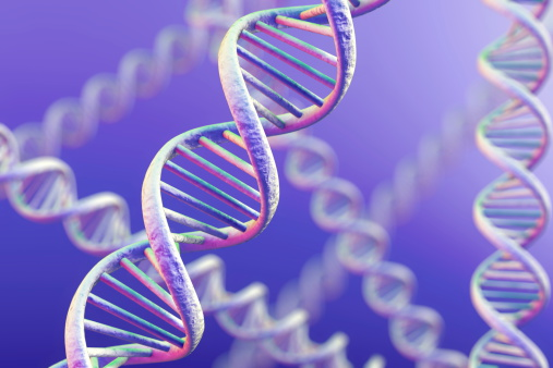 First Genetic Identifier for Autism Found