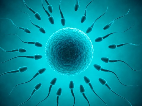 "Paternal Sperm ""Tags"" May Play a Role in Child's Autism Risk"