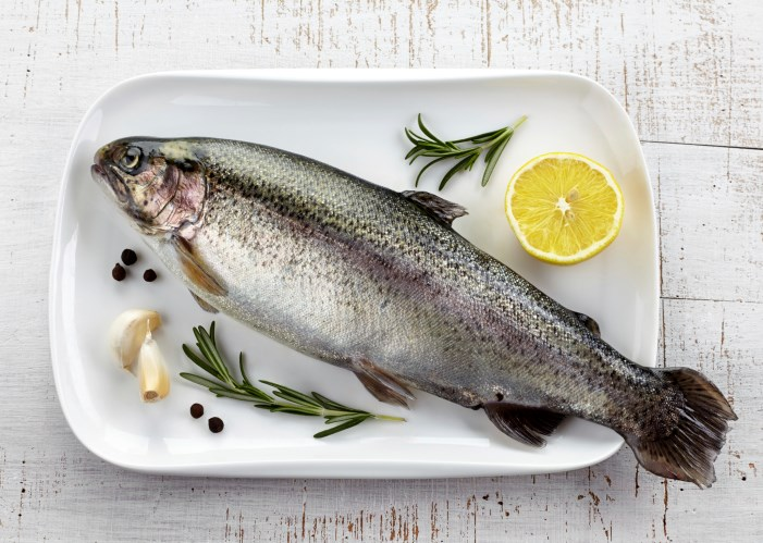 Are Fish Contributing to Antibiotic Resistance?