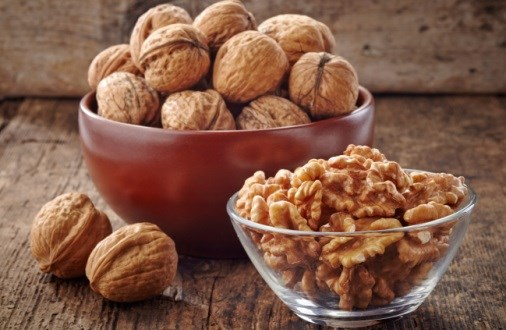 More Support for Walnuts and Improved Cognition