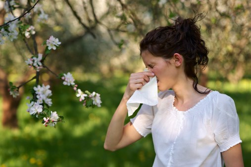 "Experts Predicting a ""Pollen Vortex"""
