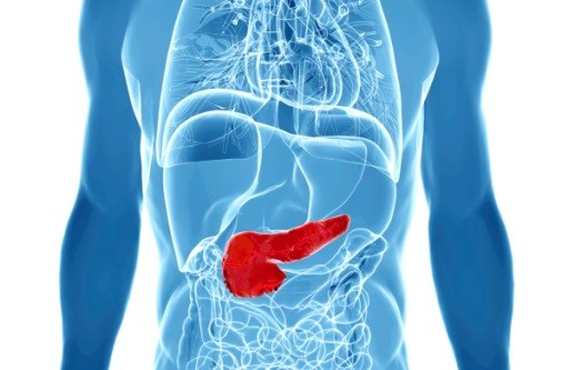 Changes to Pancreatic Cyst Management in New AGA Guideline