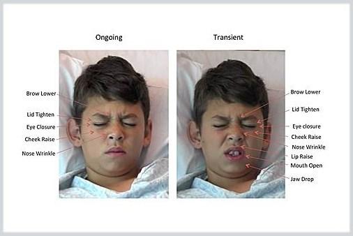 Image courtesy of the UC San Diego School of Medicine
