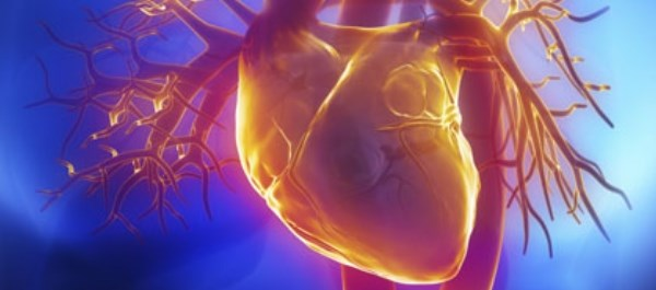 Finding among patients with atrial fibrillation undergoing catheter ablation