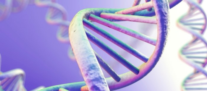 Investigational Alzheimer's Drug Shows Efficacy for Specific Gene Carriers