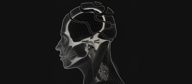 FDA Fast Tracks Investigational Alzheimer's Drug