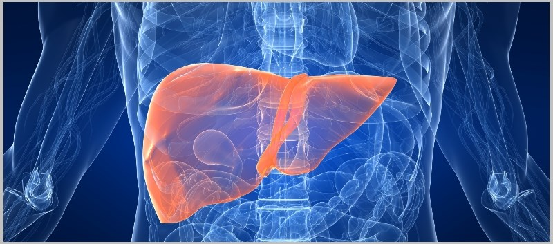 Is Type 2 Diabetes a Major Risk Factor for Chronic Liver Disease?