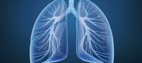 No Benefit from Triple Therapy for COPD Exacerbations
