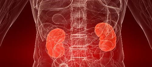 Patients with haptoglobulinuria had elevated incidence of chronic renal insufficiency