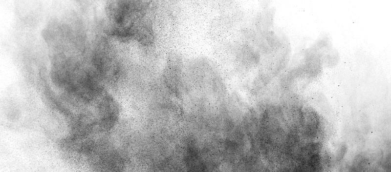 House Dust Mite Allergen Immunotherapy Deemed Safe