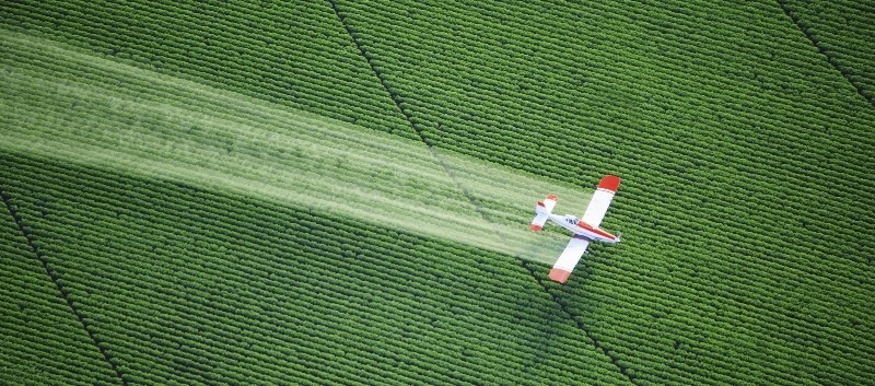 Researchers found that ASD and DD prevalence correlated with aerial pesticide exposure