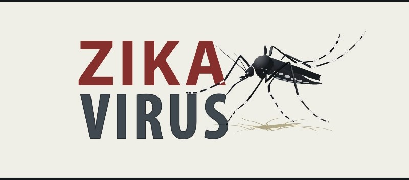 If confirmed, cases would be first instances of Zika infection in continental United States