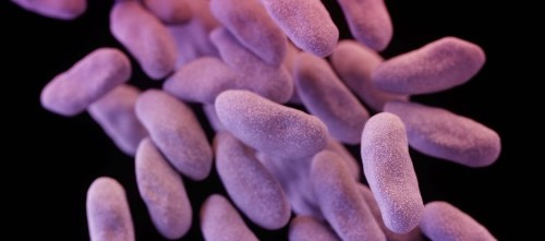 FDA Approves Test for Rapid Detection of Certain Superbugs