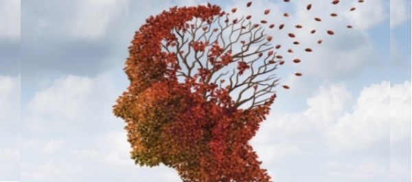 Data Support Efficacy of Novel Alzheimer's Drug Based on Genetic Risk