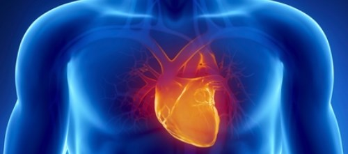 Protocol could help avoid need for heart transplantation
