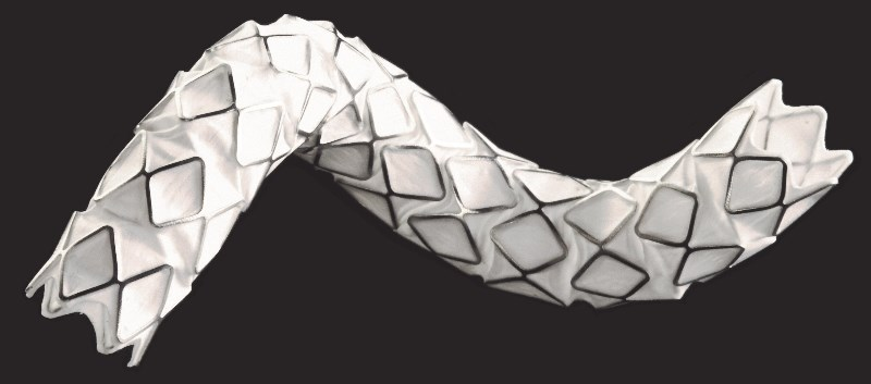 FDA OK's Balloon Expandable Stent Graft for the Iliac Artery