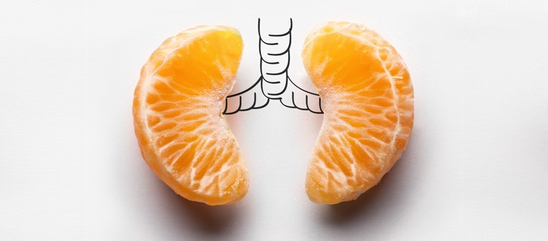 COPD risk may be reduced by eating fruits and vegetables