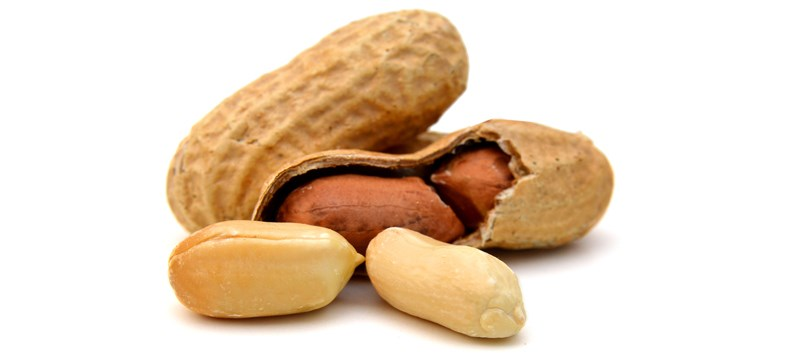 Epicutaneous Immunotherapy Shows Promise Against Peanut Allergy