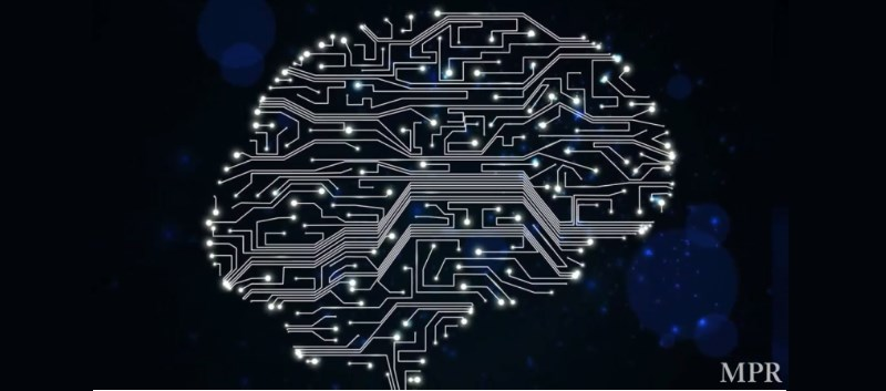 Neuralink Aims to Merge Computers with the Human Brain