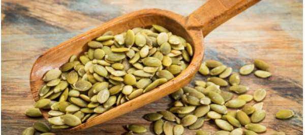 Pumpkin Seeds Sprout Numerous Health Benefits