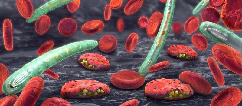 Novel Malaria Drug Gets Orphan Drug Designation