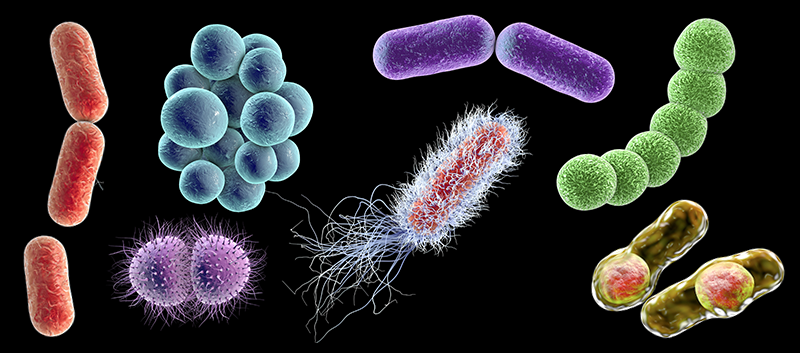 Antibiotic treatment of mild infections may be contributing greatly to resistance evolution