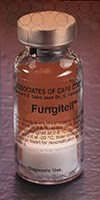 FUNGITELL ASSAY SERUM TEST for (1,3)-b-D-glucan by the Associates of Cape Cod