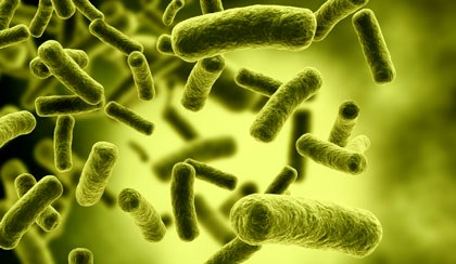 Bacterial Infections Linked to Specialty Compounding Products