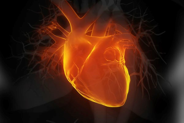 Promising Data for New Combination Antihypertensive