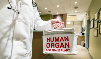 Similar Outcomes for Transplant With Overdose-Death Donors