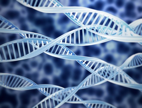 Is a Genetic Mutation The Reason for Relapse in Prostate Cancer?