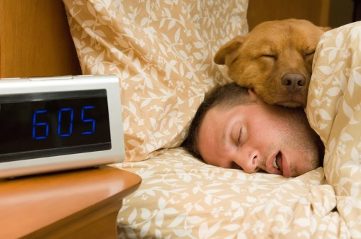 The Pet Owner's Sleep Disorder