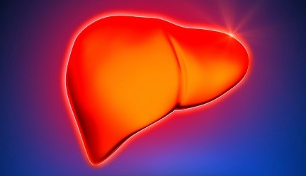 Severe Hepatic Injury Tied to Potentially Toxic Ingredient in Bodybuilding Supplement