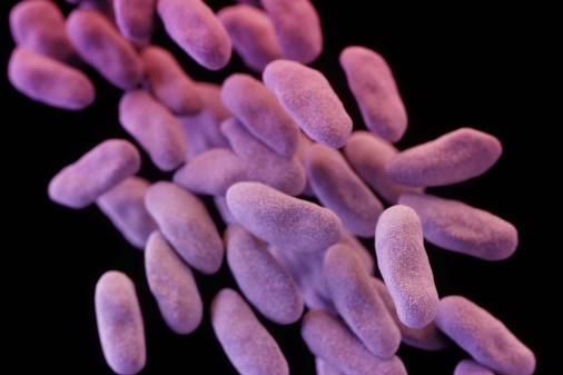 Drug Approved for Complicated Urinary Tract Infections