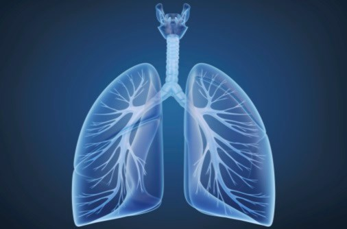 Patients with lung diseases have fewer DNRs, pain assessments than cancer patients