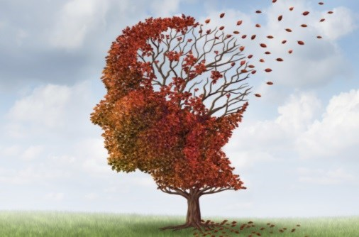 Nine Factors That Appear to Elevate Alzheimer's Risk