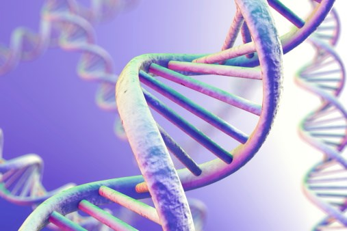 New Genetic Variant Linked to Severe Autism Identified
