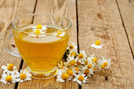 Chamomile Linked to Longevity