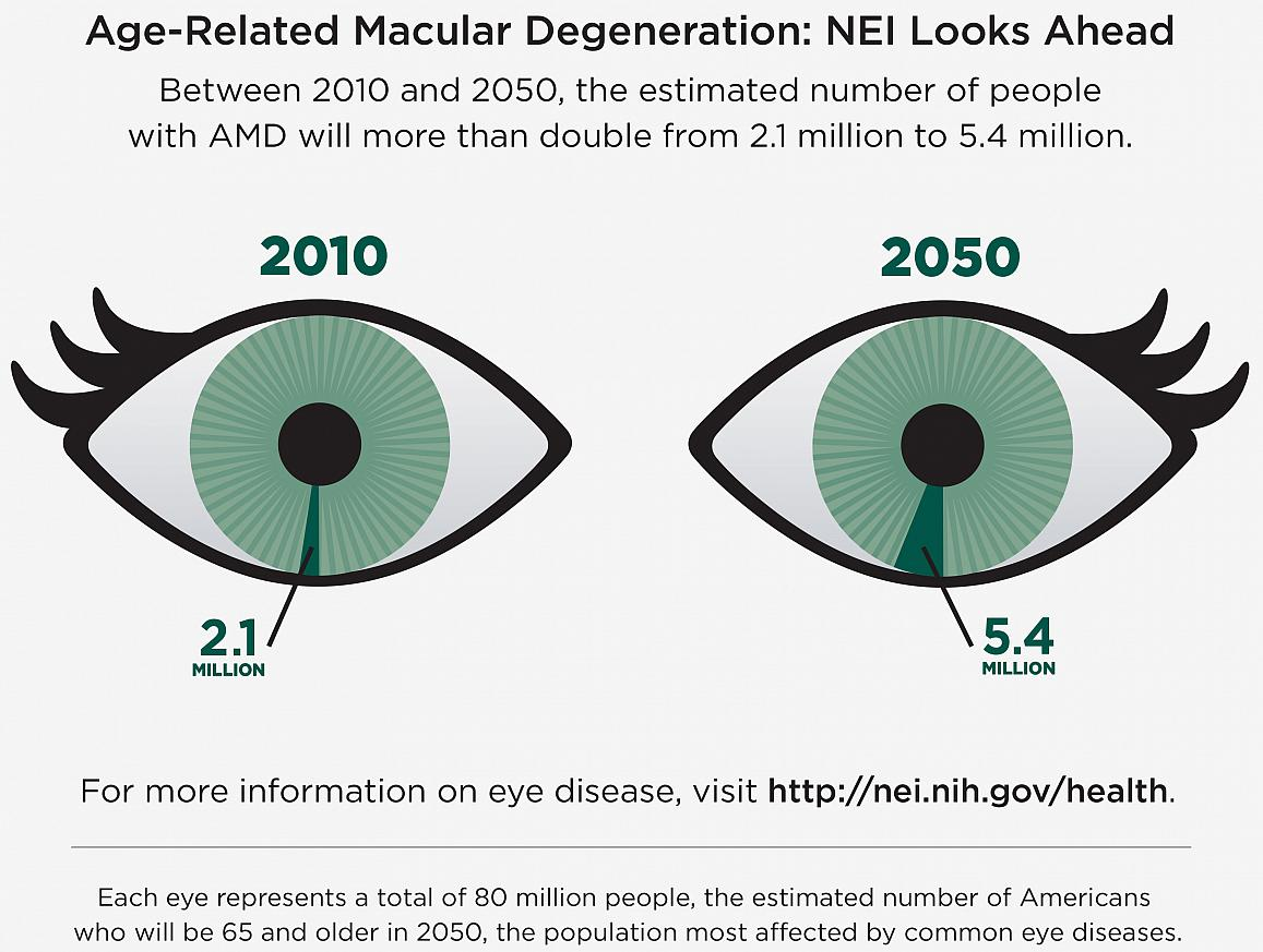 age related macular degeneration amd therapeutics market