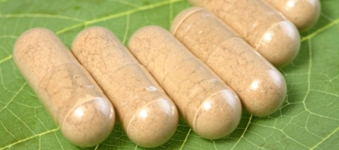 Pharmacists Encouraged to Learn More About Herbal Supplements