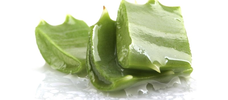 A possible mechanism of aloe vera may be attenuated to the absorption of glucose