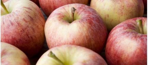 Diluted Apple Juice Suitable Alternative for Kids with Mild Gastroenteritis