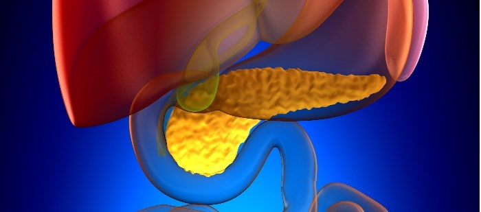 Lynparza Granted Orphan Drug Status for Pancreatic Cancer