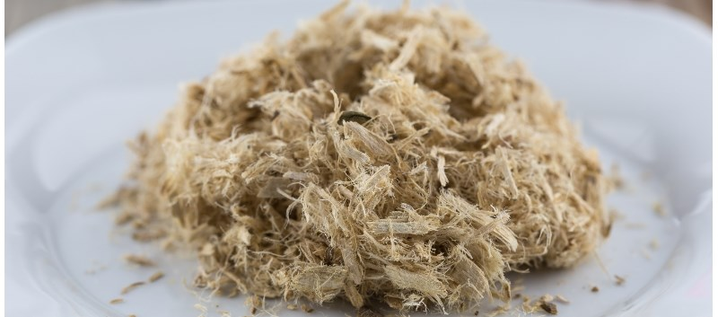 The mucilage of the slippery elm tree has been used medically for hundreds of years
