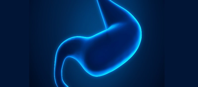FDA to Review Gimoti for Diabetic Gastroparesis in Adult Women