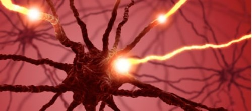 Does Opioid Therapy Benefit Patients with Polyneuropathy?