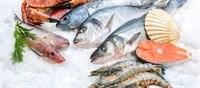 Fishy Advice from the FDA