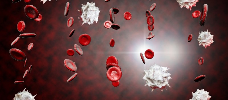 Lenalidomide Assessed for Hematologic Response in Patients With MDS/MPN-RS-T