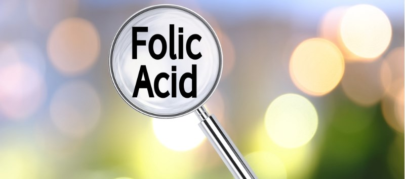Folic Acid Past First Trimester Does Not Prevent Preeclampsia